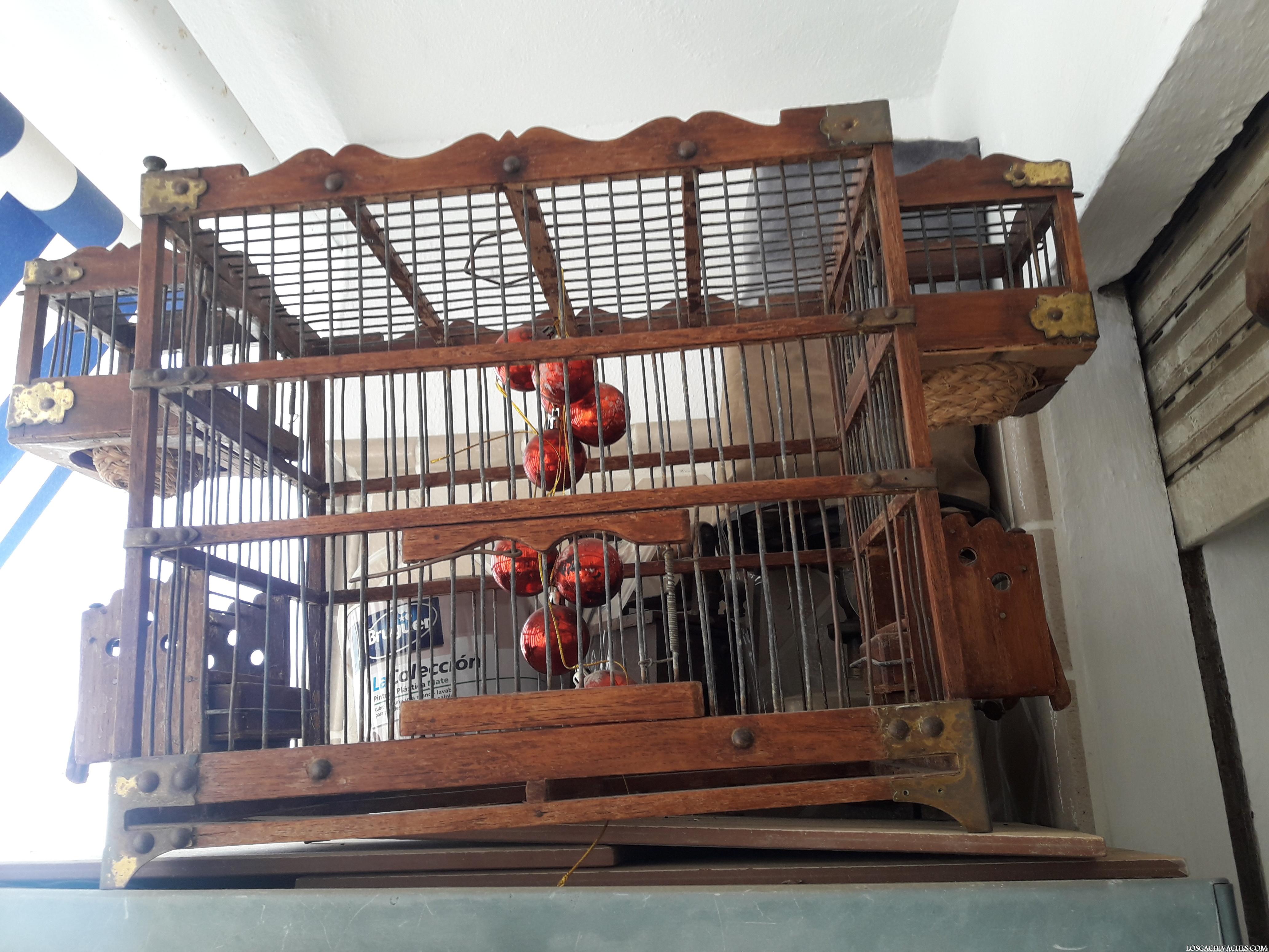 jaula de madera,pajaros,antiguo,criaderos